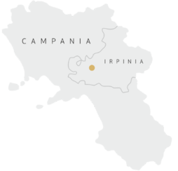 estate-location-campania